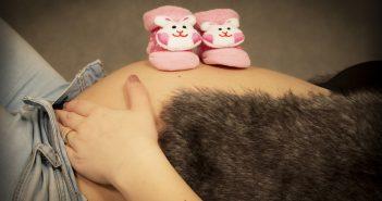 Geslacht zwangerschap